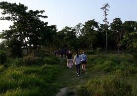 Koshi Tappu Wildlife Tour
